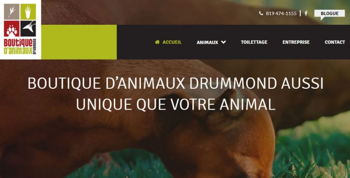 Boutique d'Animaux Drummond